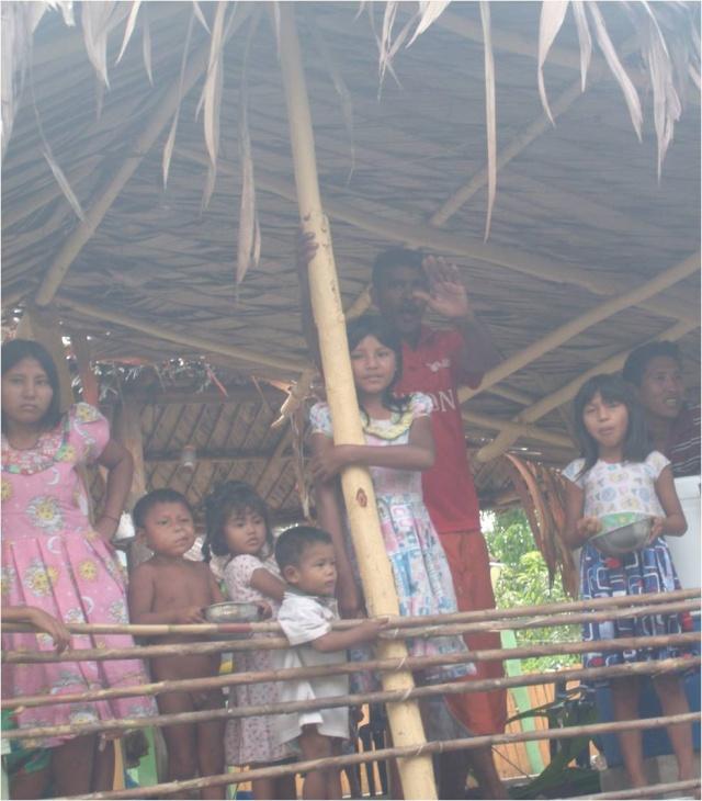 Donación de Plantas Eléctricas, a Nuestros Hermanos Indigenas de la Comunidad de Capure, Estado Delta Amacuro Imagen47