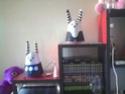 24h avec Karotz 2011-013