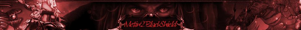 Metin2 Black Shield