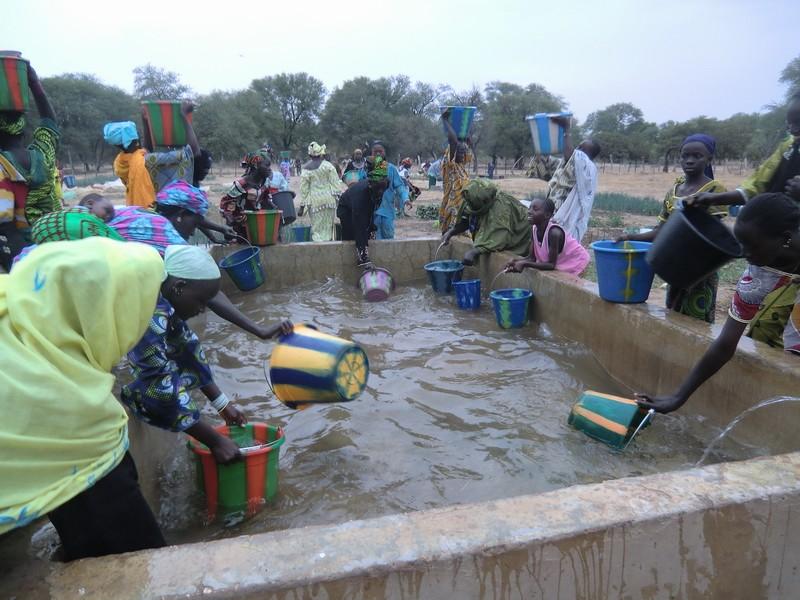 [MALI] - Village de Komodindé - Commune de Konsiga - Arrondissement de Tambakara - Cercle de Yélimané - Région de Kayes Cimg3310