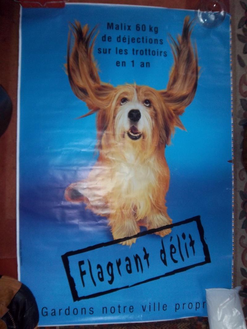 Catalogue du GLP printemps 2011  Affich20