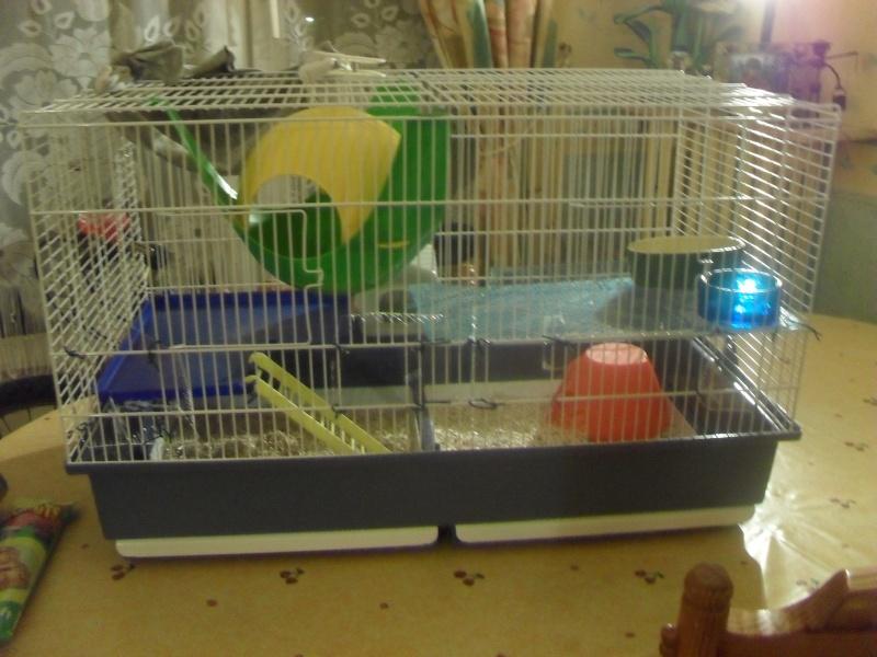 Photos de vos cages - Page 5 Sam_0115