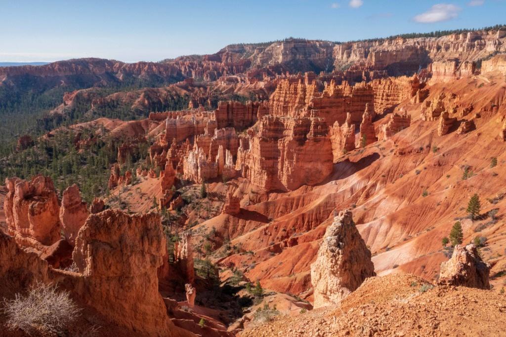 De Bryce Canyon à Bonneville _dsc4510