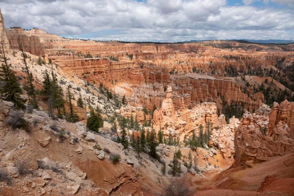 De Bryce Canyon à Bonneville _dsc4610