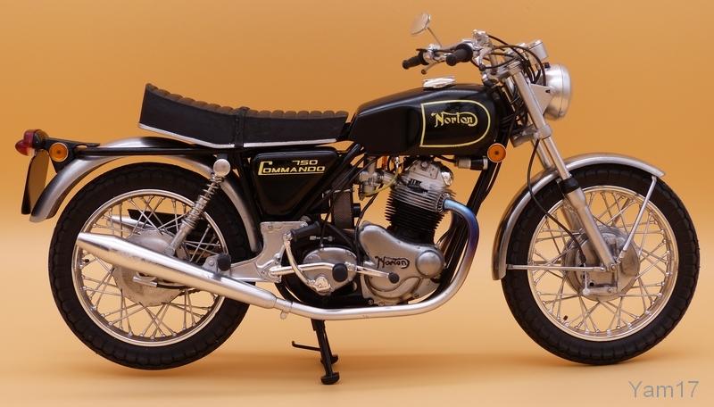 Yam17 Norton10