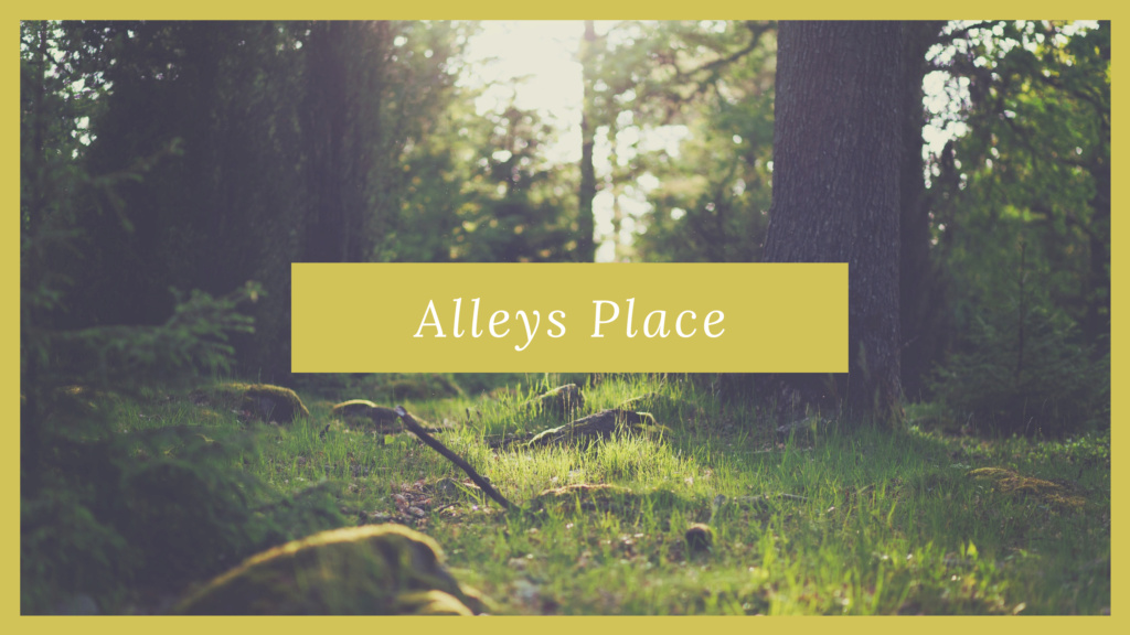 Alley's Place