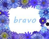 (tricot) pull Drops tricoté en une pièce de haut en bas Bravo310