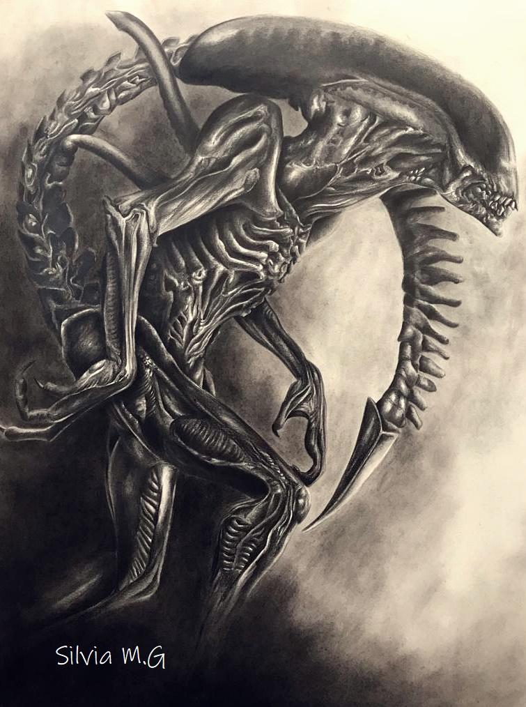 Alien y Predaror Pali10