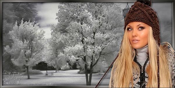 hiver311