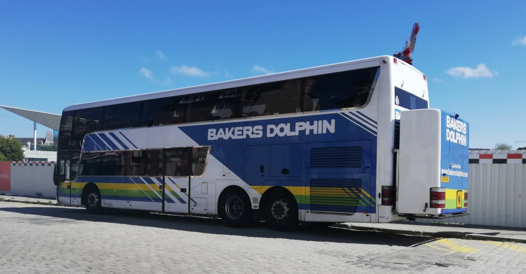 Bakers Dolphin Img_2031