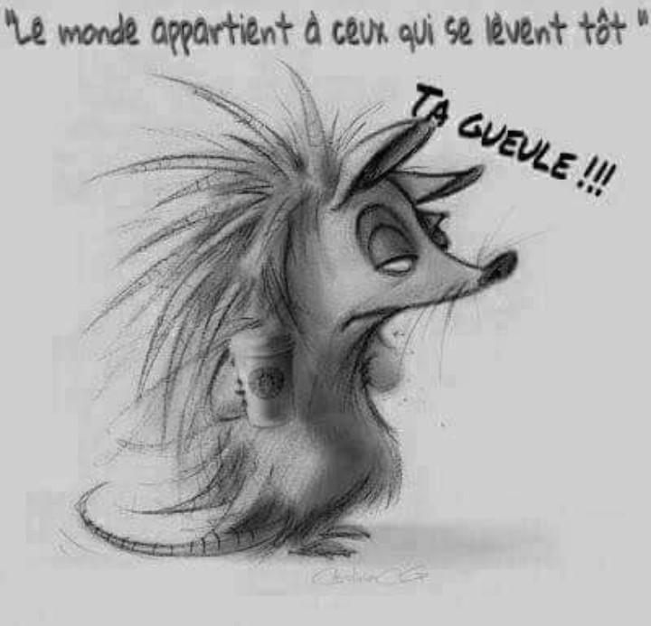 Humour en image du Forum Passion-Harley  ... - Page 33 Img_2299