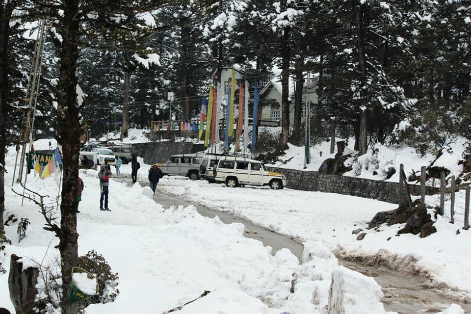 ইয়ুমথাং  সিকিম Yumthang Valley 38051010