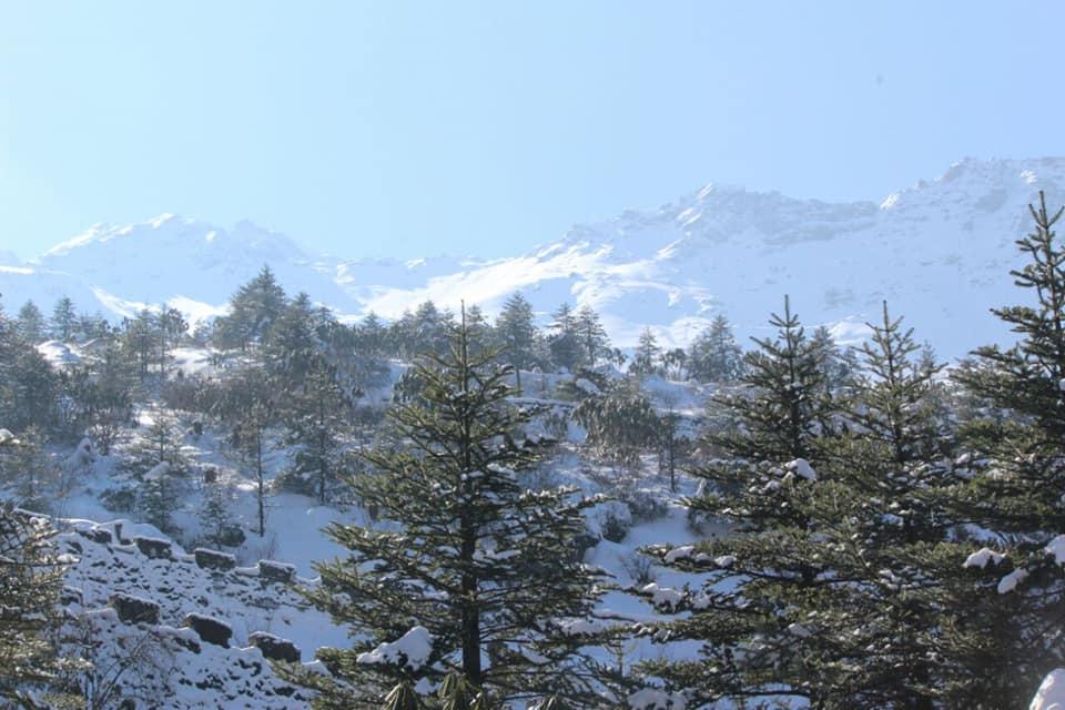 ইয়ুমথাং  সিকিম Yumthang Valley 38140410