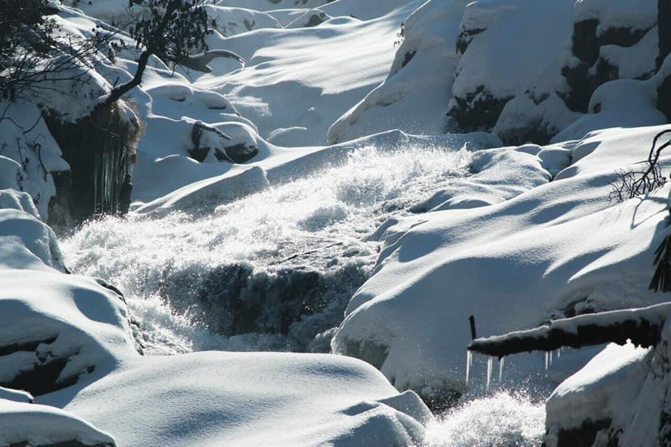 ইয়ুমথাং  সিকিম Yumthang Valley 38158010