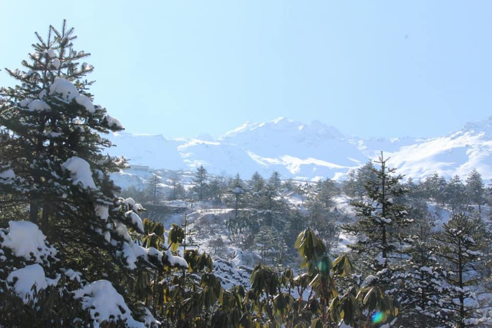 ইয়ুমথাং  সিকিম Yumthang Valley 38200010