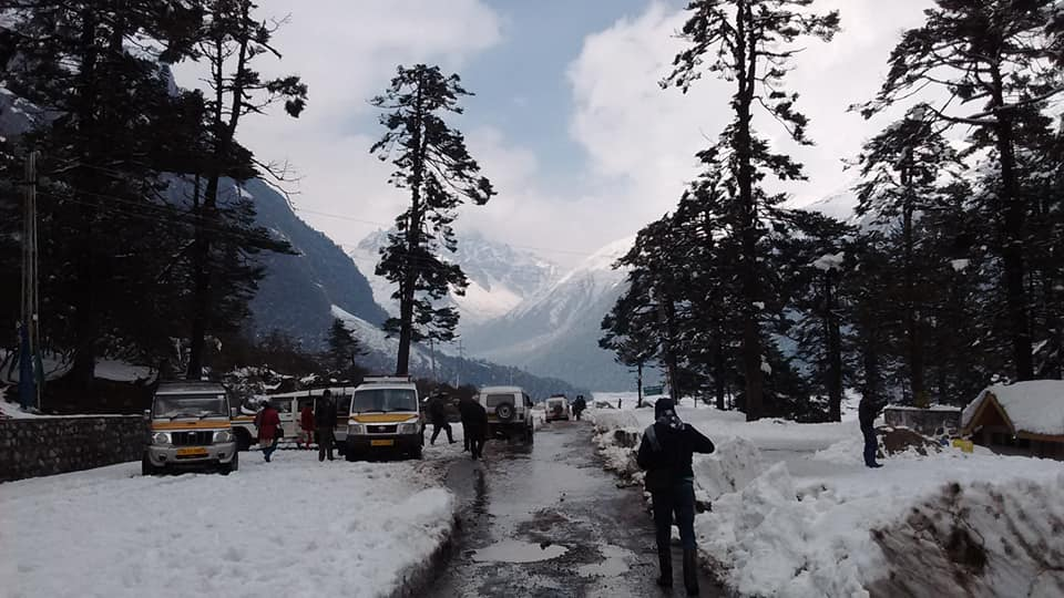 ইয়ুমথাং  সিকিম Yumthang Valley 38224910