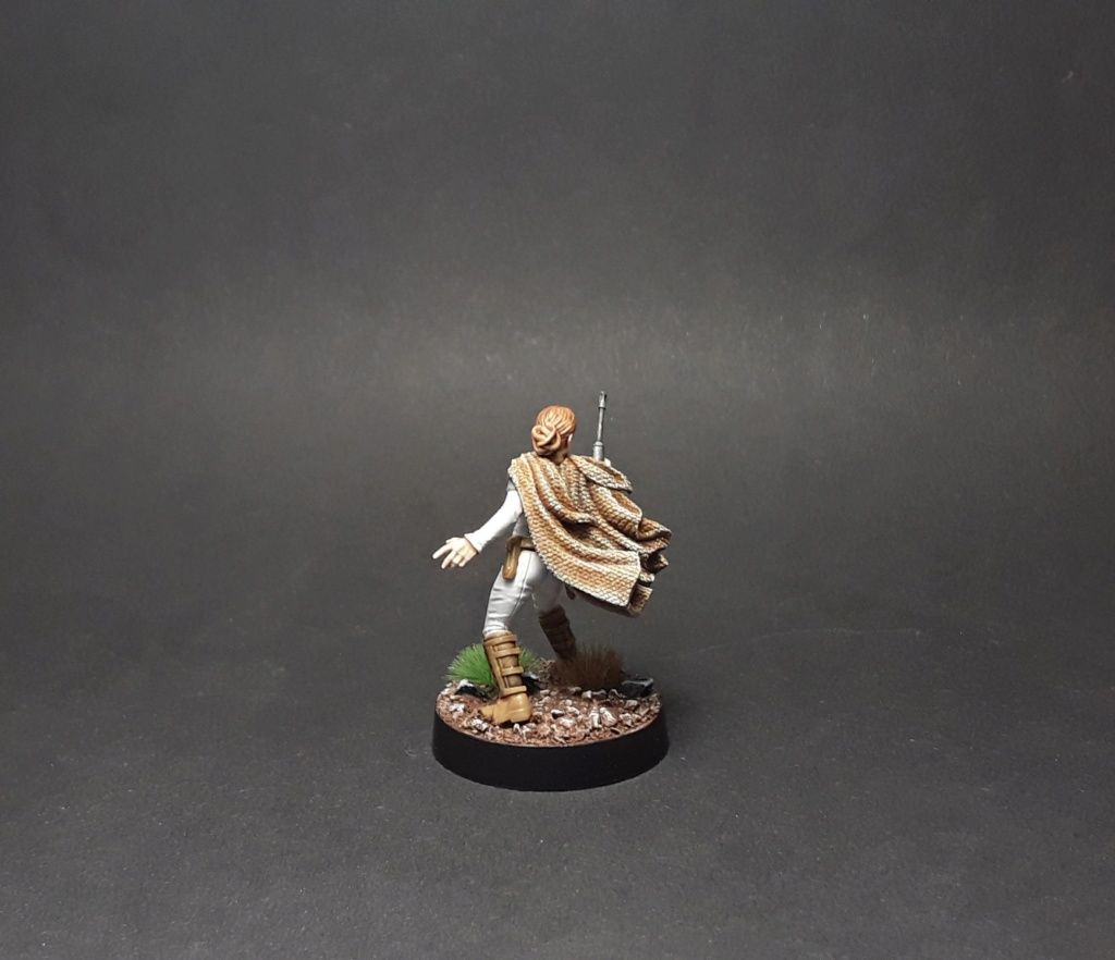 Star wars legion par Nicos - Page 3 20200910