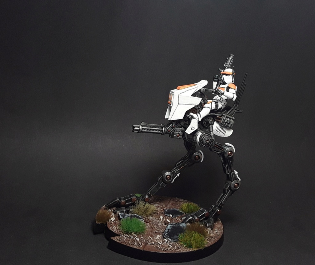 Star wars legion par Nicos - Page 3 20201013