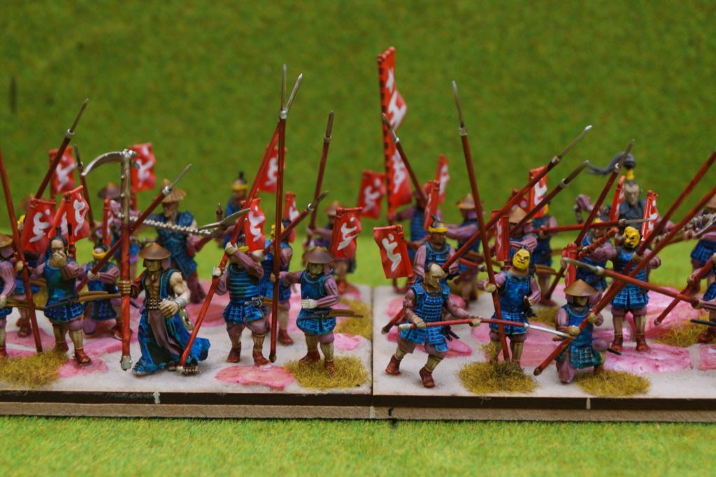 Qui osera stopper la progression d'une armée de samouraïs qui ravage les terres du milieu ? Dsc07513