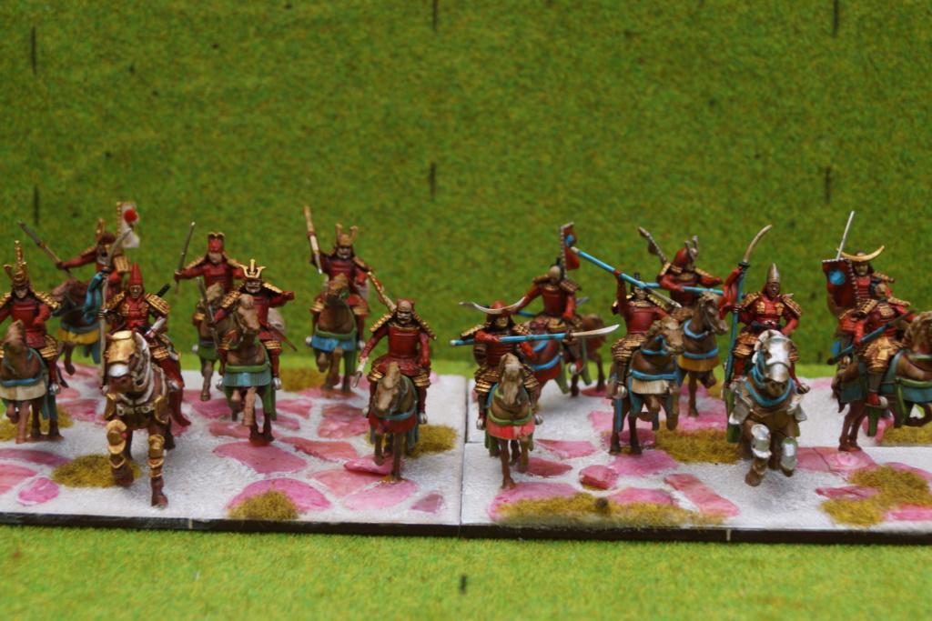 Qui osera stopper la progression d'une armée de samouraïs qui ravage les terres du milieu ? Dsc07517