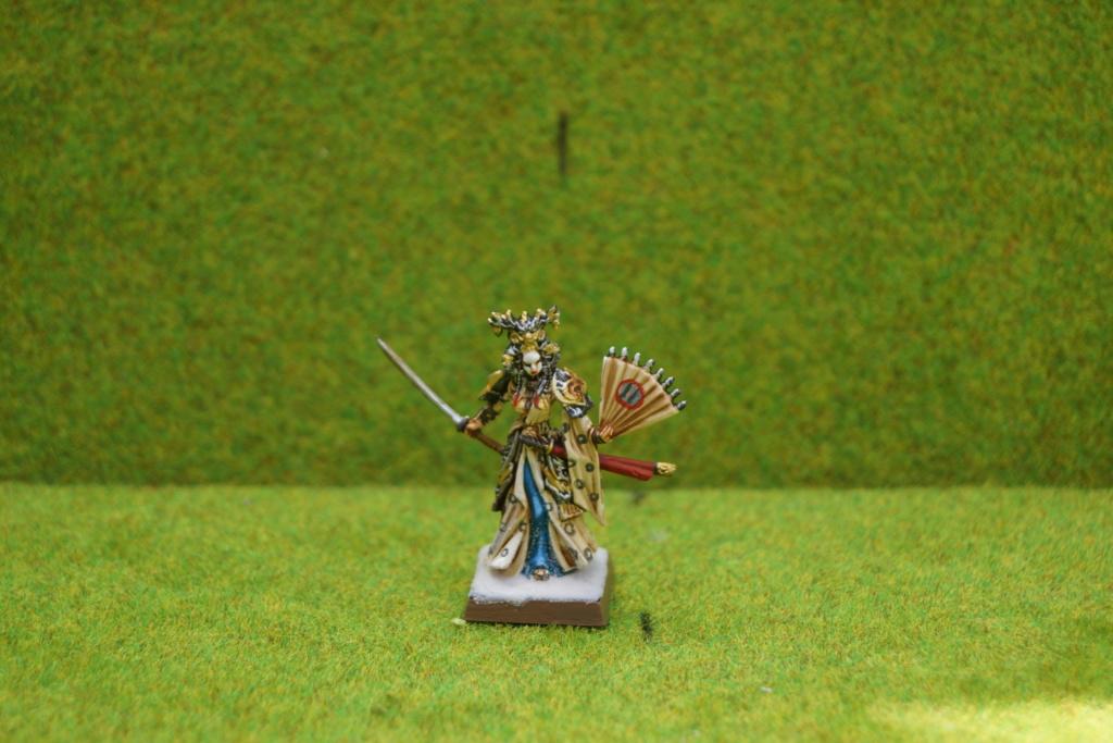 Qui osera stopper la progression d'une armée de samouraïs qui ravage les terres du milieu ? Dsc07520