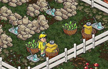 Gioco Bunny Village | Sacchetto di Carote #2 Sche2997