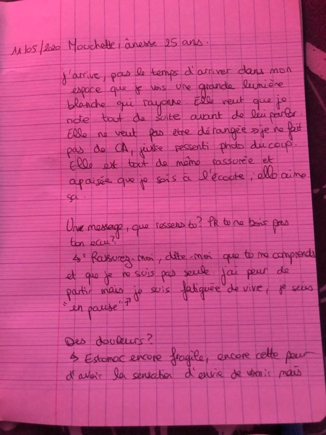 Mouchette, ânesse malade Ca_110