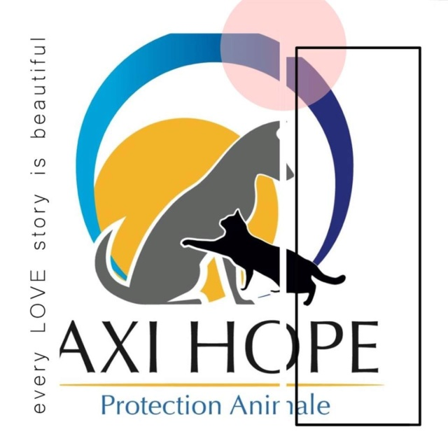 AXI HOPE FRANCE  Protection animale
