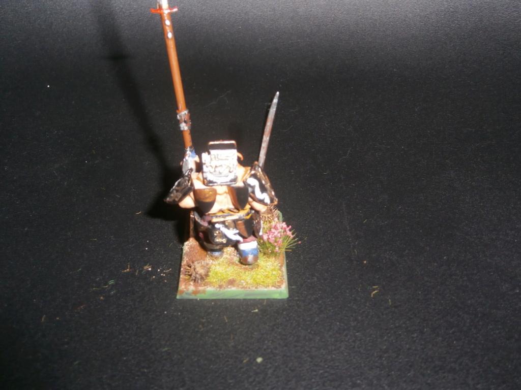 Mon armée mercenaire - Page 3 P6130321