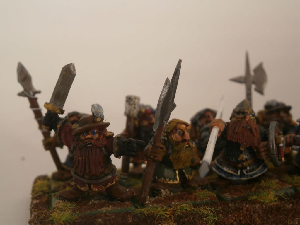 Mon armée mercenaire - Page 3 P6220413