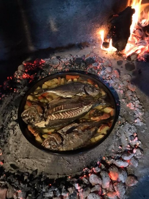 RIBA - MORSKA i SLATKOVODNA: vrste, zanimljivosti, pitanja, ribolov, recepti za pripremu... - Page 23 Orada_12