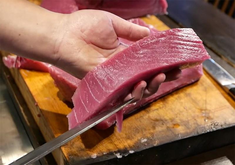 RIBA - MORSKA i SLATKOVODNA: vrste, zanimljivosti, pitanja, ribolov, recepti za pripremu... - Page 23 Tuna-t10