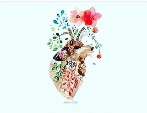 #أين قلبك ؟! Fb_im180