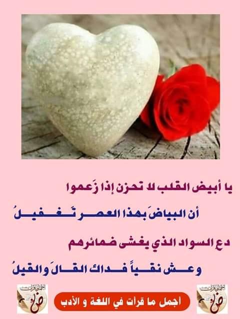 يا أبيض القلب... Fb_im258