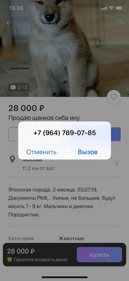 СТРАННЫЕ ОБЪЯВЛЕНИЯ С АВИТО - Страница 38 69933510