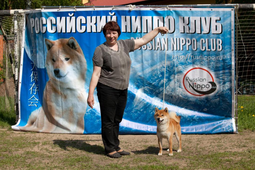 Щенки  DZASIKI VARASI г.Москва A1051y10