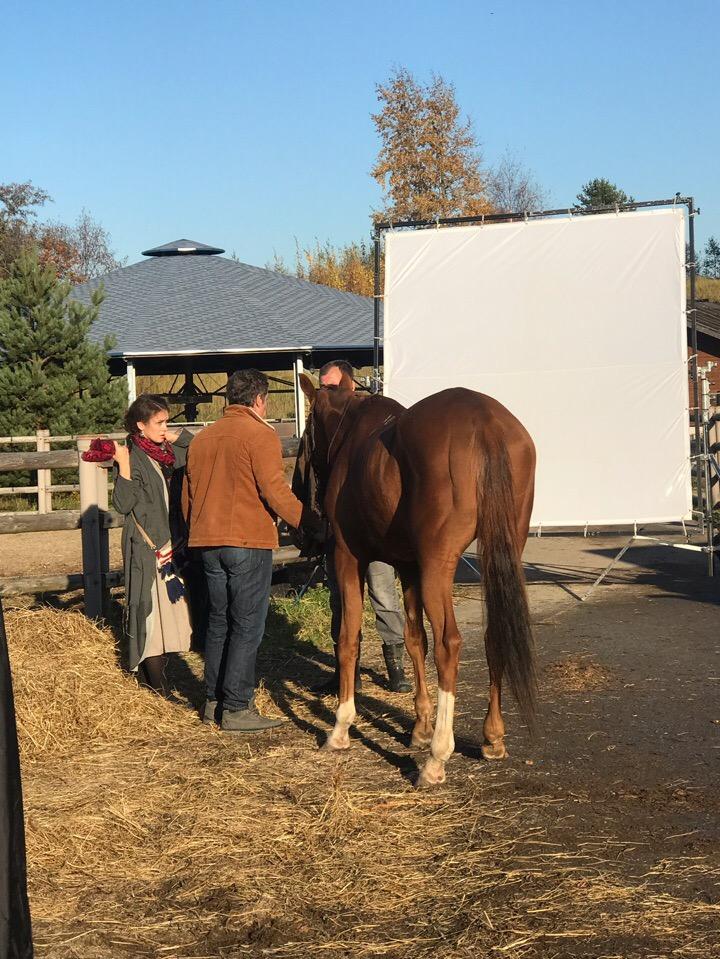 Конь изабелловой масти (2018) - Страница 2 Hu8wwd10