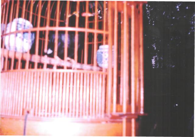 Фотки из Восточных путешествий - Страница 13 _5110