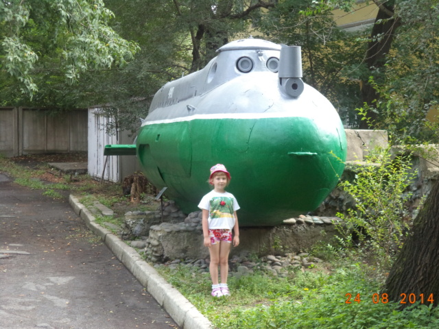 Владивосток и не только..... Dsc00410