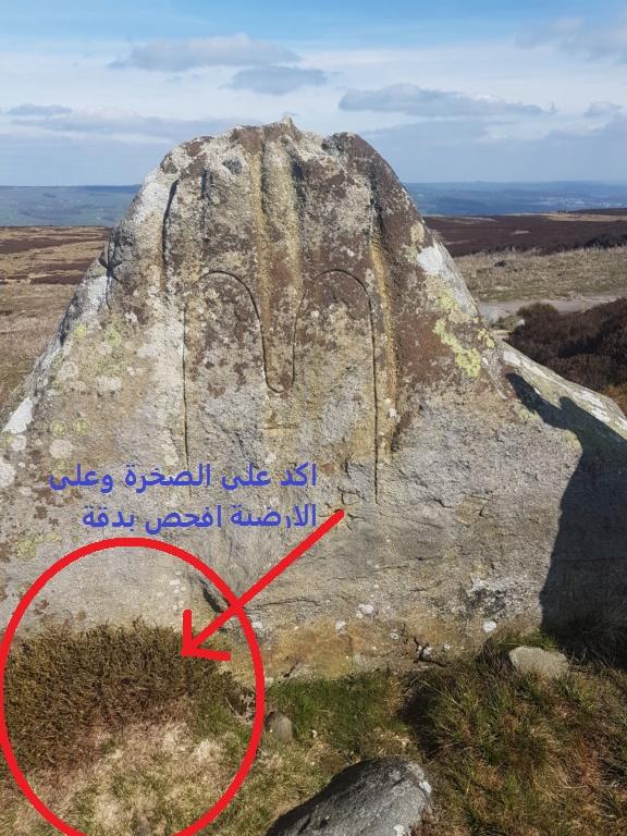اشارتي شمس على نفس الصخرة 20190411