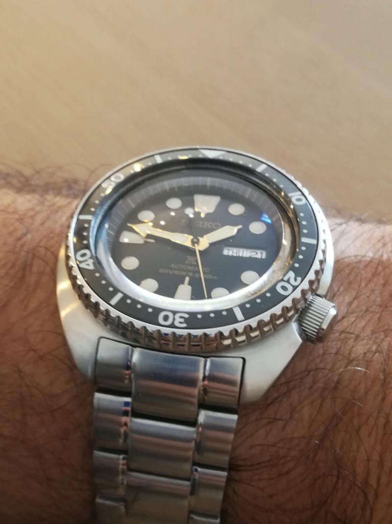Seiko New Tortuga - Exito total 20180728