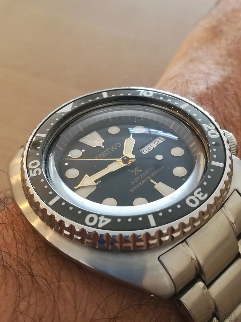 Seiko New Tortuga - Exito total 20180729