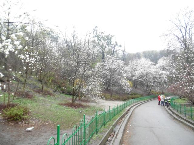 Киев любимый - Страница 9 1011
