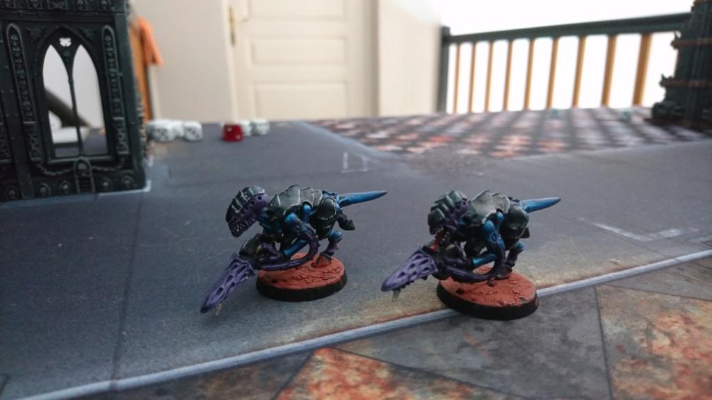 Flotte Ruche Hydra de skrolkr Dsc_1213