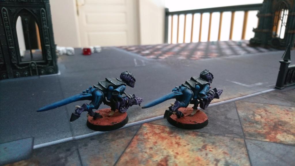 Flotte Ruche Hydra de skrolkr Dsc_1214