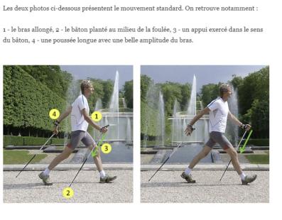 La poussée sur le bâton et la magie de la marche nordique. (de Jean Pierre Guilloteau) Mouvem10
