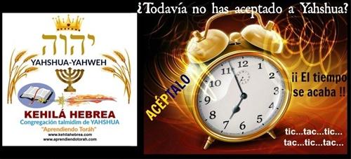 Los yahudim están despertando del ruah de letargo Tic_ta11
