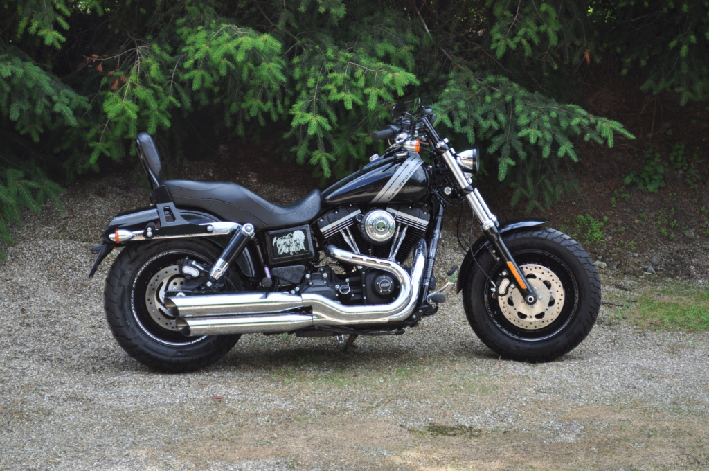 DYNA FAT-BOB, combien sommes-nous sur Passion-Harley - Page 42 Dsc_0710
