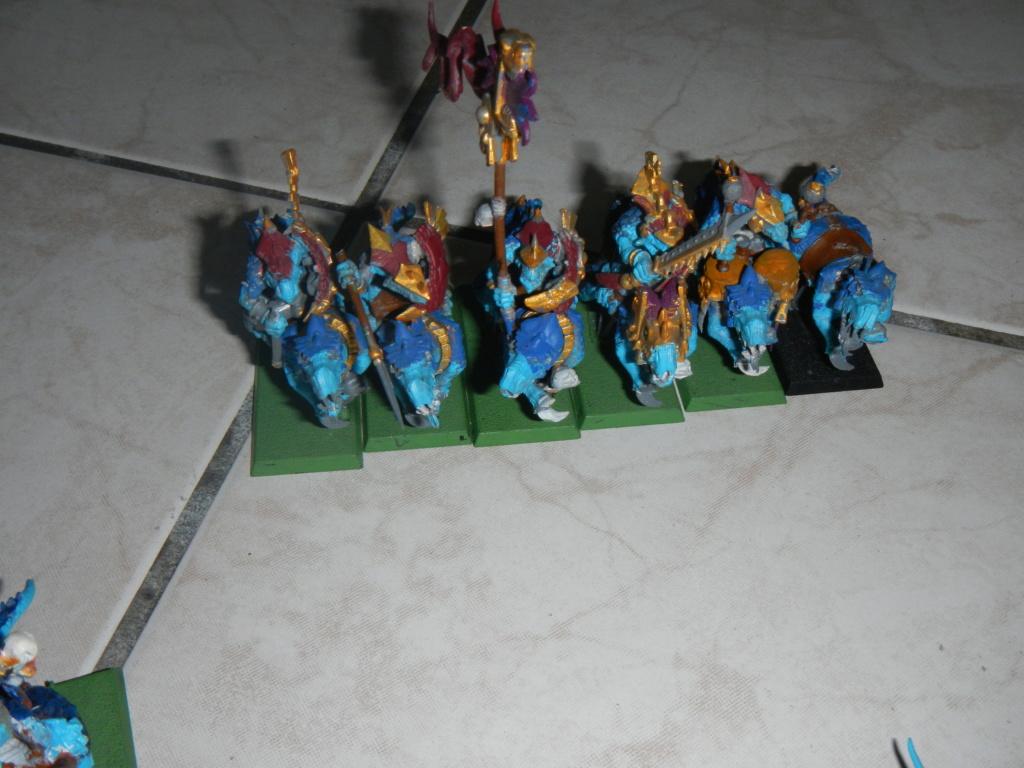 warhammer patrouille - Page 3 Dscn0613