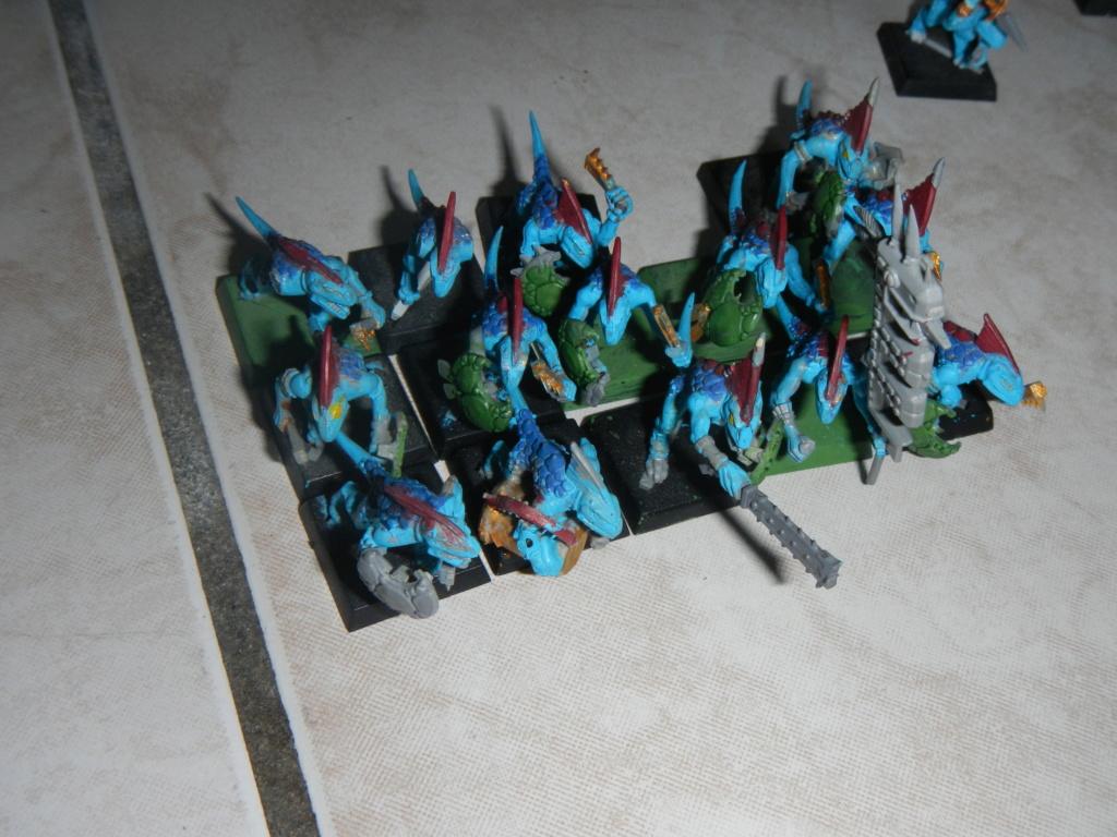 warhammer patrouille - Page 3 Dscn0615